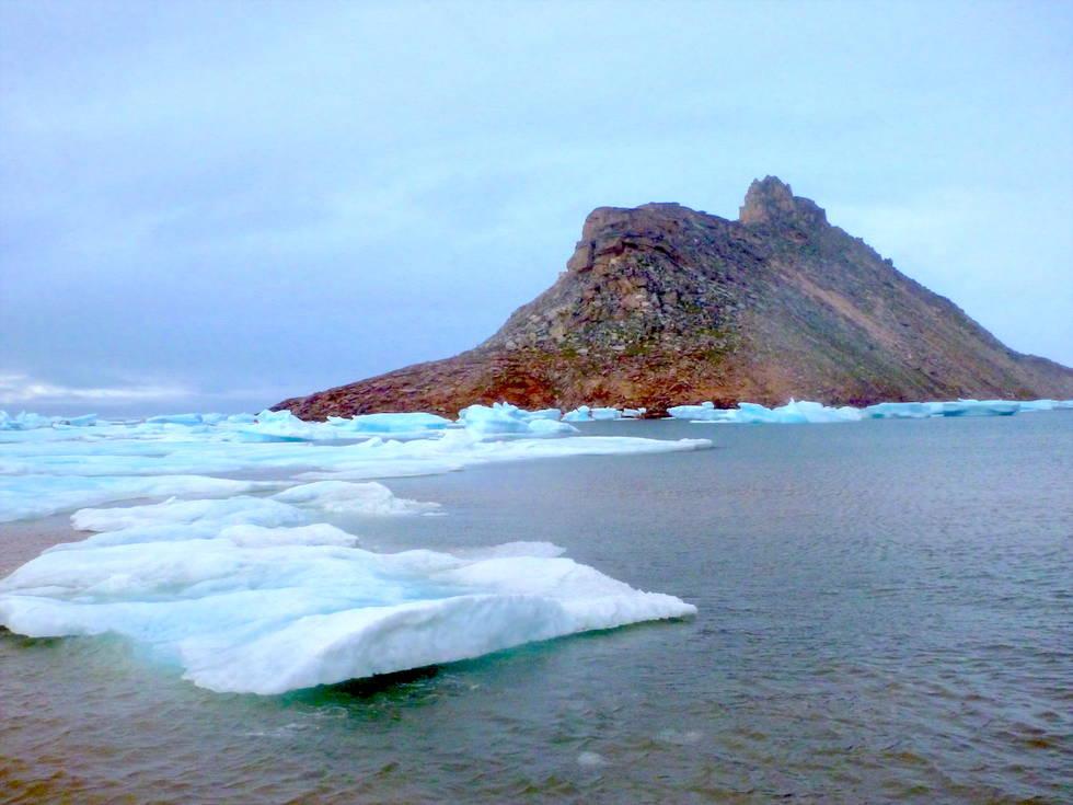 Banquisa polar flotante. Foto de Javier Zardoya